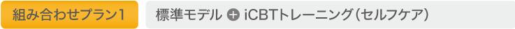 組み合わせプラン1:標準モデル + iCBTトレーニング(セルフケア)
